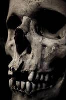 Death by FalseFront