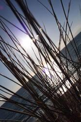 Wexford Beach by Cilmeron