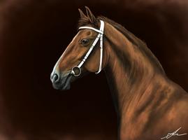 Karolien, a Beauty by Valanee