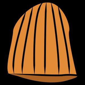 TheMrOrangeContinuum's Profile Picture
