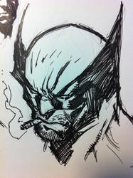 Wolverine by BChing