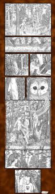 Owl Training by byakurai1313
