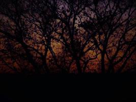 Happy Birthday VesnaRa014 by Ambruno