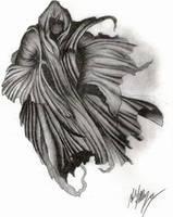 Grim Reaper. by HailBreaker