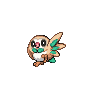 Rowlet Front by Nathaniel98643