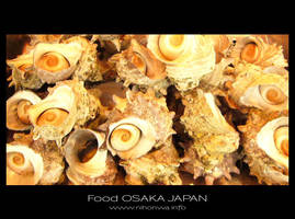 Japanese food -9- by Lou-NihonWa