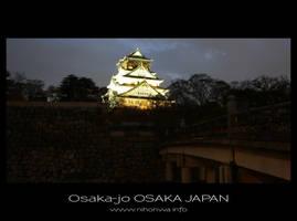 Osaka-jo by night -1- by Lou-NihonWa