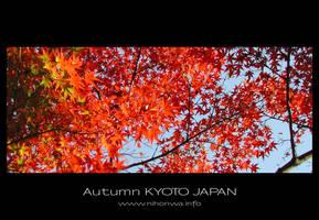 Autumn by Lou-NihonWa