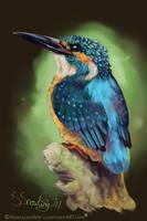 Kingfisher by ManiacalMew