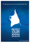 Protect Our Marine Wildlife by grafyt