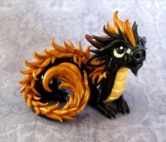 Young Black and Gold Oriental - Auction by DragonsAndBeasties