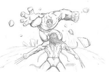 Hulk vs Wolverine by michaelstewart