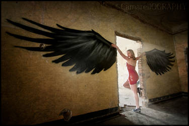 black wings by wandi-Camarell
