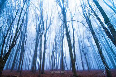 Lost Traces by hannes-flo