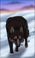 Winter's twilight by Zerwolf