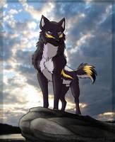 Lone wolf by Zerwolf