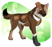 Mottled Dog by Zerwolf