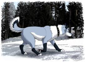 Tracking Prey by Zerwolf