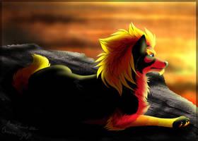 Palava Taivas by Zerwolf