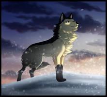 Blizzard by Zerwolf