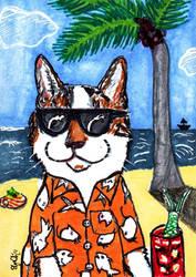 Cat Paradise - 'Island Dreams' by Dangerskillz
