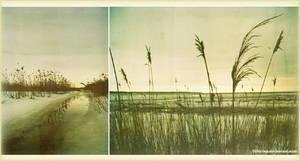 sunday by S6ltuvus