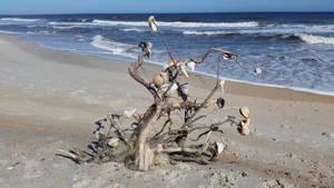 Ocean Tree by dkart71