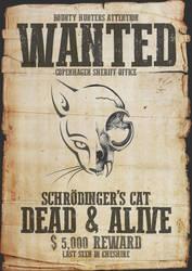 Schrodinger's Cat by Kl-lAYMAN
