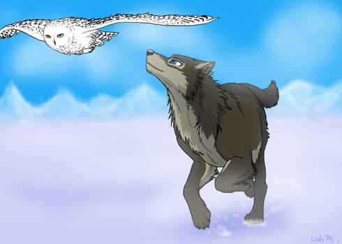 Eonami trade by Wolf-Goddess13