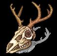 [F2U] Natural deer skull- left by JustSkygge