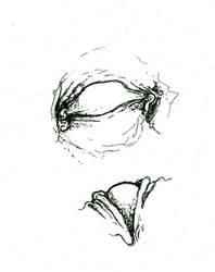 sketchbook 03.29.07 by defmunky