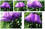 Beautiful Purple with lace edge TUTU by SewObession