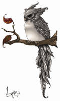Owl by Lynfir