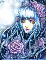 Winter Rose by yuumei