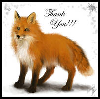 Red Fox by yuumei