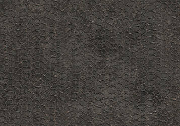 Grated Concrete 2 by Craftmans