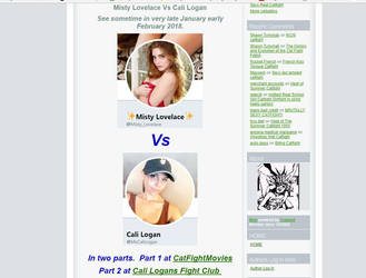 Custom Cali CatBall CatFight coming soon by westcat