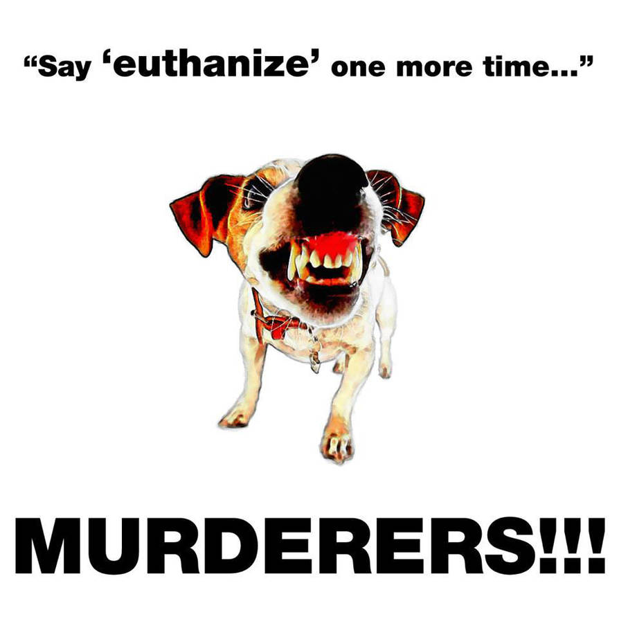 euthanasia is murder