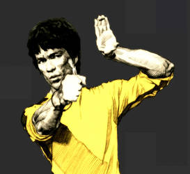 Bruce Lee-10 by kse332