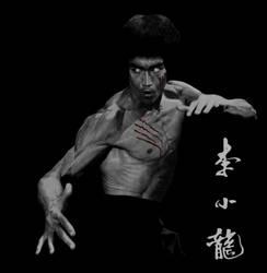 Bruce Lee-17 by kse332