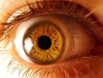 eye 28 by eyestock