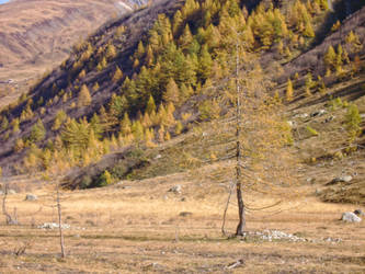 October in the Italian Alps III by MrTinyx