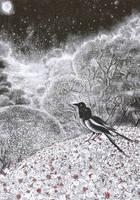 magpies in the springtime trees by barbarasobczynska