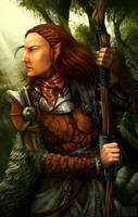 Baldur's Gate - Jaheira by ErstwhileSky