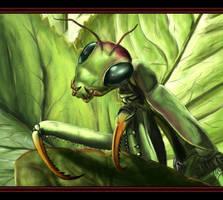 ID... by Mantis-nk
