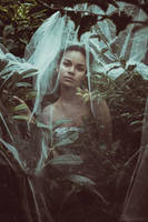 Wild Stories - Isabell 4 by Michela-Riva