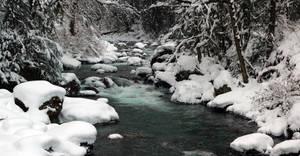 Winter Dreams by jasonwilde