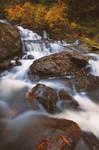 Autumn Rush by jasonwilde