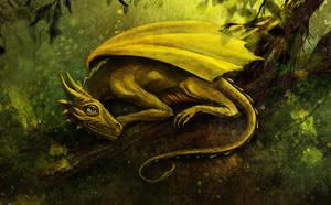 Zylara: The Golden Baby Dragon by BrookeGillette