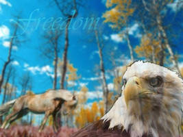 Freedom III by TeganCasey
